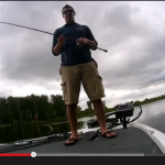 Dobyns Champion 703c Rod Review