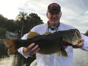 "Wow! How about this amazing 27"" long, 11 lb. 2 oz. largemouth caught by our friend Bill Chumbler in the Harris Chain of lakes in Florida recently? In our book this is definitely a trophy!"