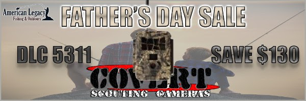 DLC COVERT GAME CAMERA